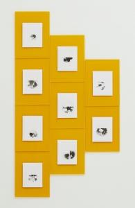 Boedi Widjaja, <i>九百九十九朵玫瑰 (Nine Hundred and Ninety-Nine Roses)</i>, 2019, 9 pinhole photos, brass, foam, tripod stand, peci, dimensions variable